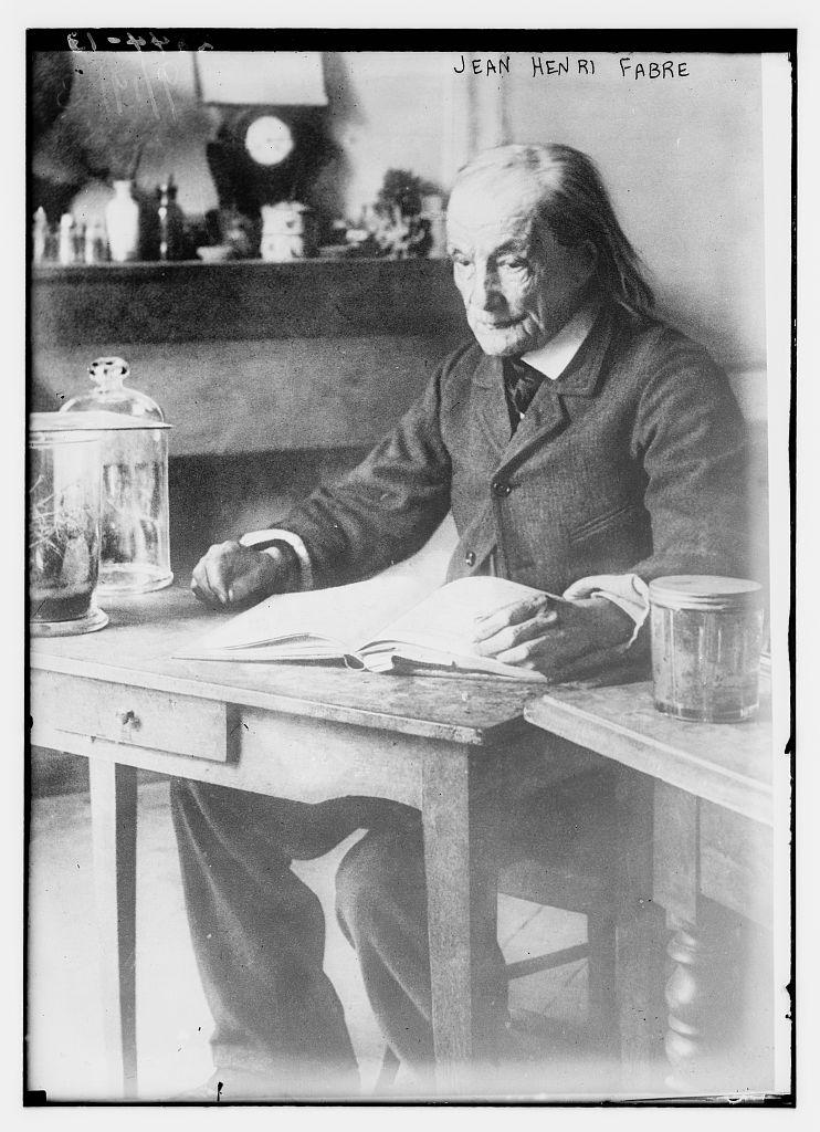 Jean-Henri Fabre. Credit: Library of Congress via Flickr.