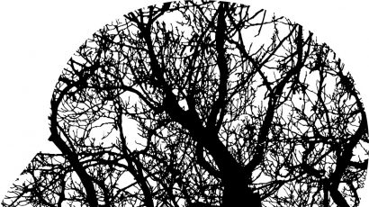 tree branch silhouette and human brain