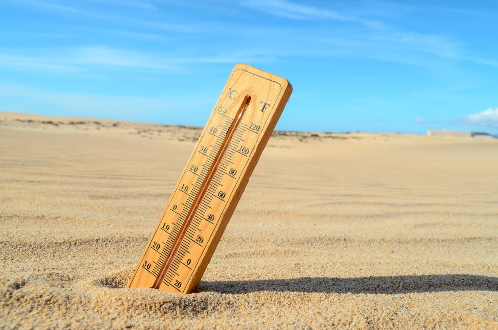 thermometer in desert sand