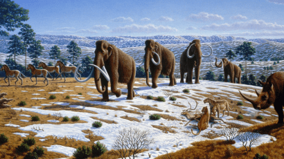 Woolly mammoths once were plentiful on the tundra. Illustration: Mauricio Antón via Wikimedia Commons. CC BY 2.5. Cropped.