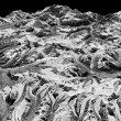 3-D model of Himalayan glaciers