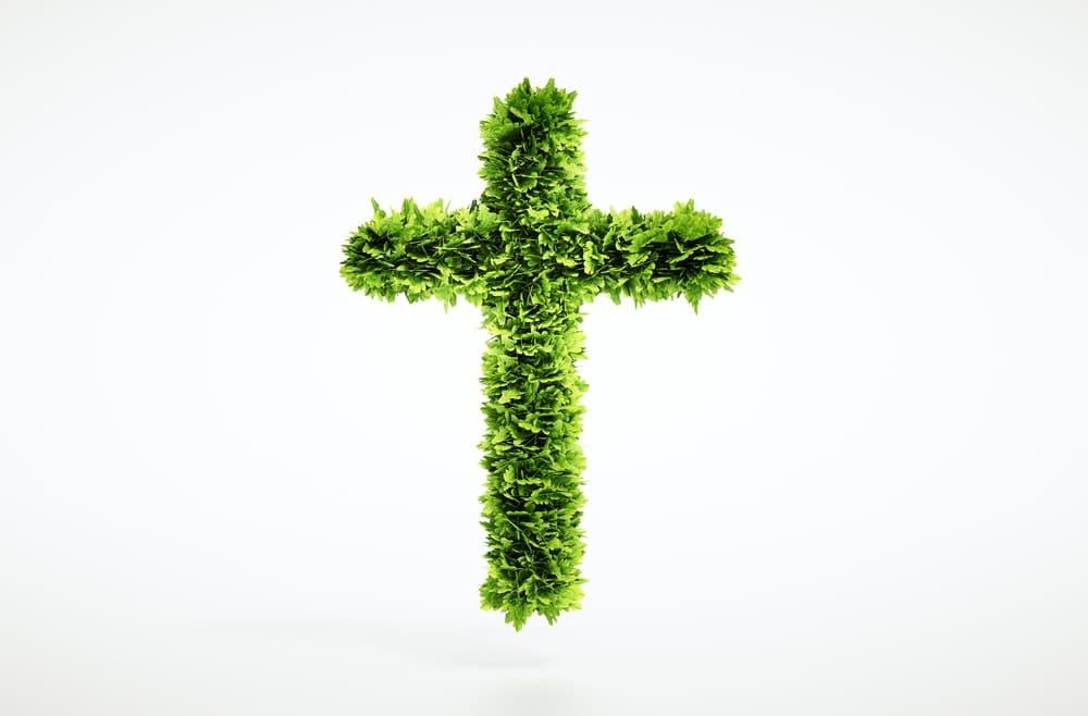 cross made of grass