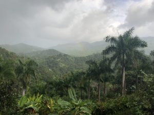 Mountain landscape in Puerto Rico