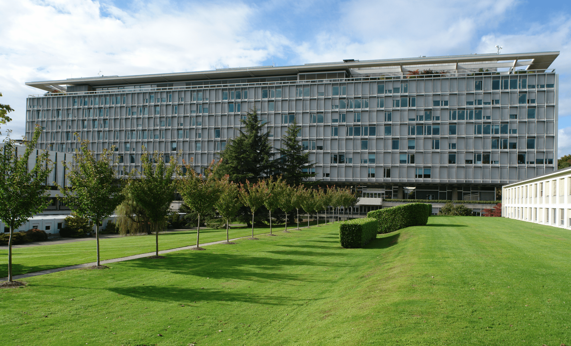 The World Health Organization in Geneva.