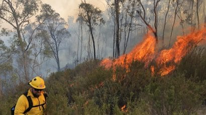firefighter with wild fire in Australia