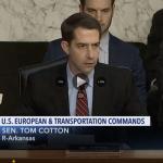 Sen. Tom Cotton at a congressional hearing.