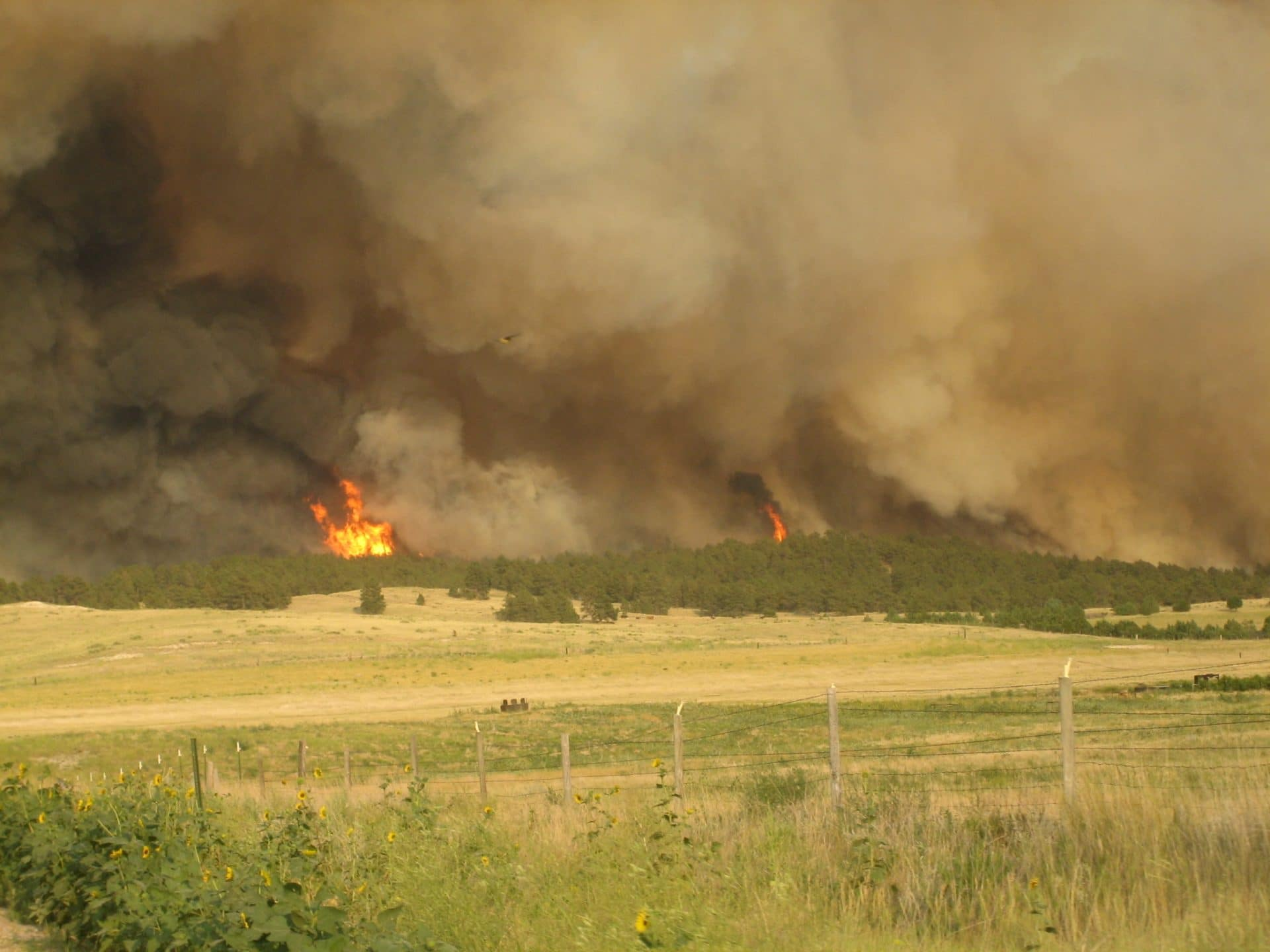 Spotted Tail Fire, only several hours old, rages northward toward the town of Chadron, Nebraska