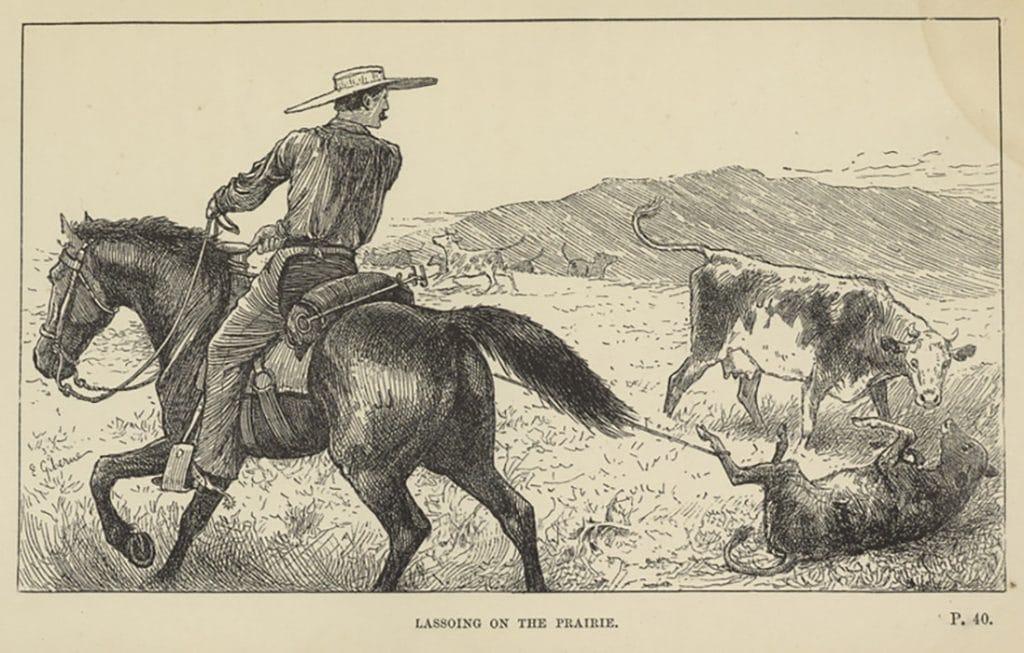 old woodcut of cowboy lassoing calf