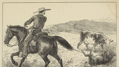 old woodcut of cowboy lassoing calf