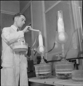scientist making penicillin in lab in 1940s