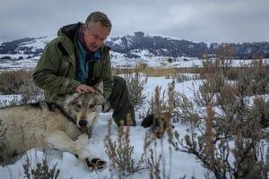 David Quammen with wolf