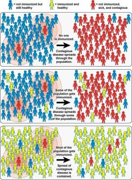 A chart depicts the concept of herd immunity.