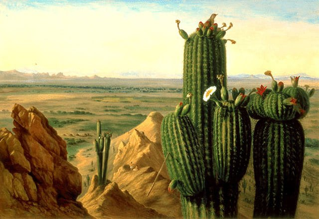 artist view of Gila River in 1855